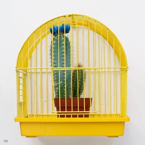Conceptual Photograph: Elisa von Brockdorff