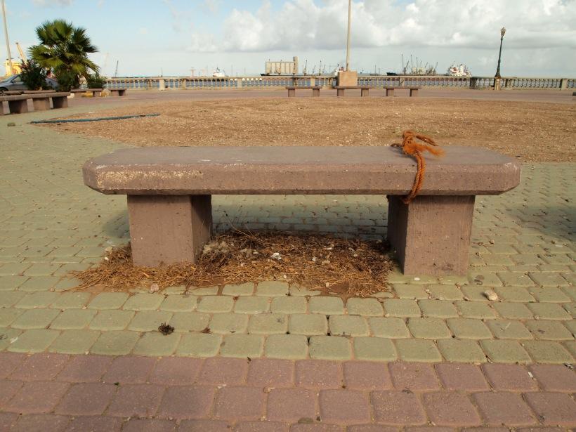 A Tripolitan Bench