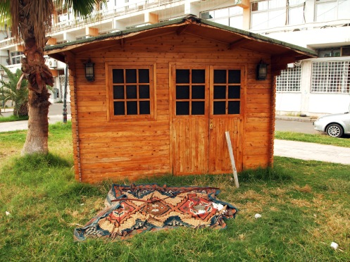 A shed in the City Centre (with rug)