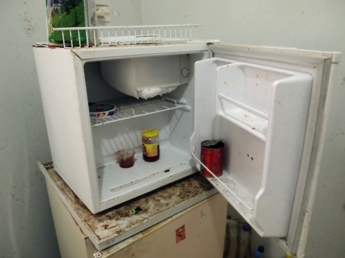 The home in Fallh: Kitchen fridge